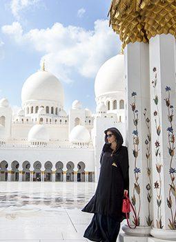 ОАЭ Эмираты